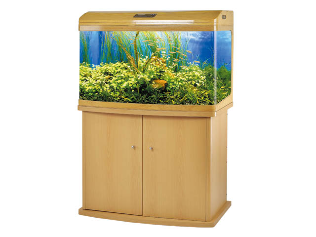 large version seamless aquariums