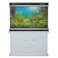 CS DOUBLE ARC AQUARIUM