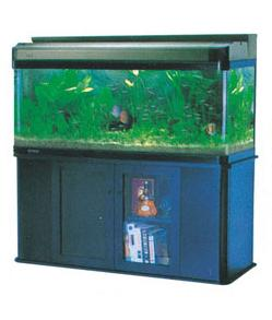 ARC GLASS AQUARIUM