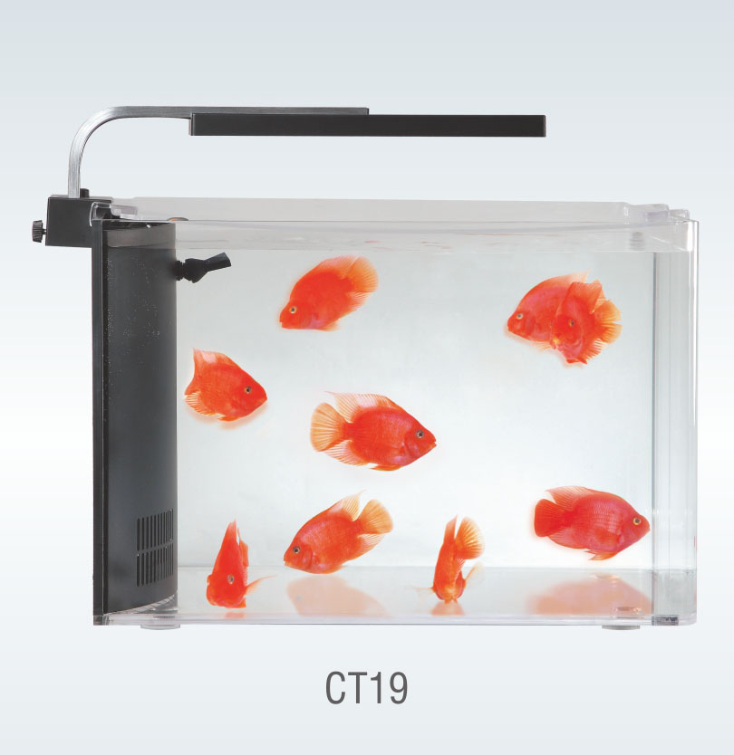 CLARITY AQUARIUM KIT