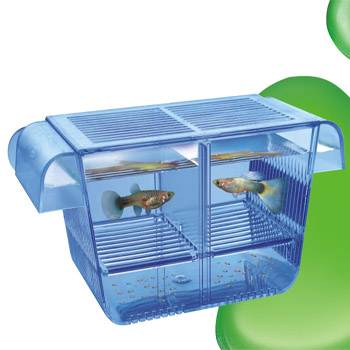Aquarium fish hatch box