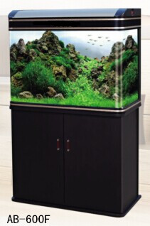 JAP elegant curved aquariums
