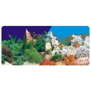 Double Sided Aquarium Background Poster Fish Tank Backdrop