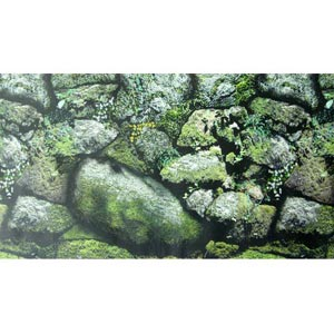 NATURE EXOTIC ROCKS BACKGROUND PAPER
